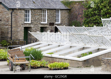 Hot beds for planting seedlings with a plant carrier - Stock Photo