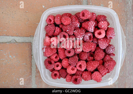 frozen raspberries in a bowl - Stock Photo