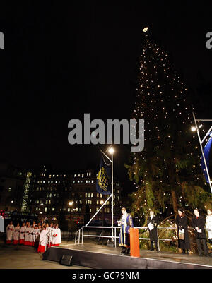 Trafalgar Square Christmas tree - Stock Photo