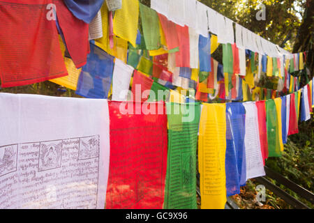 Colourful Prayer Flags, Khecheopalri Lake, Pelling, Sikkim, India - Stock Photo