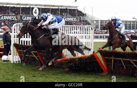 Horse Racing - 2010 Cheltenham Festival - Day Four - Stock Photo
