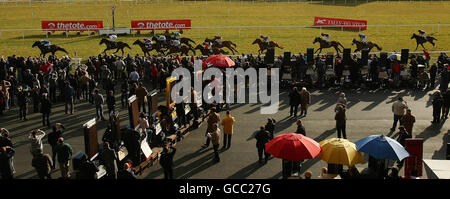 Horse Racing - Lodge Park Stud Park Express Stakes Day - Curragh Racecourse - Stock Photo