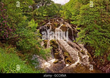 Swallow Falls at Betws-y-Coed, North Wales, UK - Stock Photo