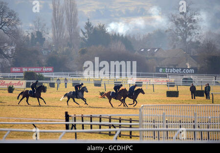 Horse Racing - 2010 Cheltenham Festival - Day One - Stock Photo