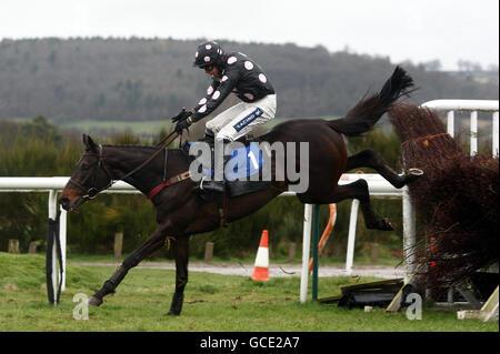 Horse Racing - Ludlow Racecourse - Stock Photo