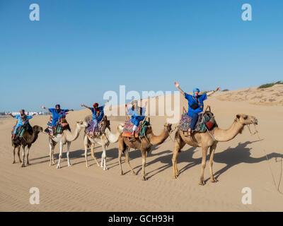 Camel trek on the beach; Essaouira, Morocco - Stock Photo