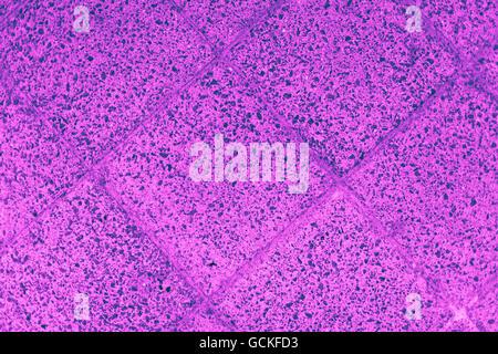 Excellent pink blue purplish turquoise bluish violet stone floor backgrounds quadrangular floor plates - Stock Photo