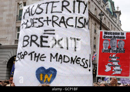Austerity Lies Racism poster at Anti Brexit demo 'March for Europe' on 2nd July 2016  in London England  KATHY DEWITT - Stock Photo