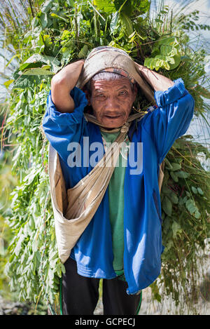 Man in the Annapurna Conservation Area - Stock Photo