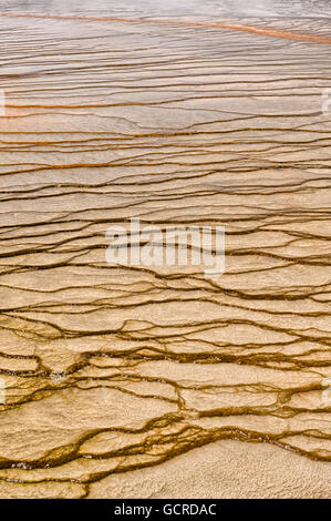 Algae patterns at the edge of the Grand Prismatic Spring, Yellowstone National Park - Stock Photo