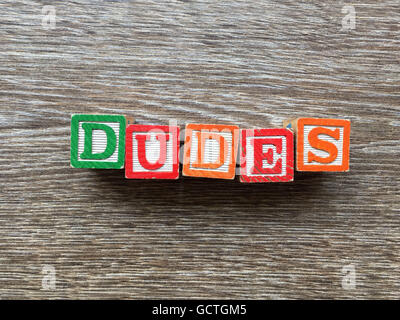 DUDES word written with wood block letter toys - Stock Photo