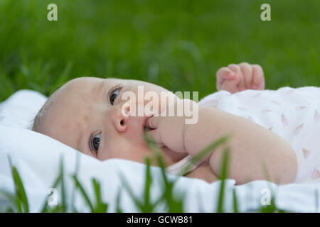 newborn baby lies on grass in park with hand in mouth - Stock Photo