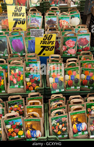 Flower market, Amsterdam, Holland, Netherlands, Europe - Stock Photo