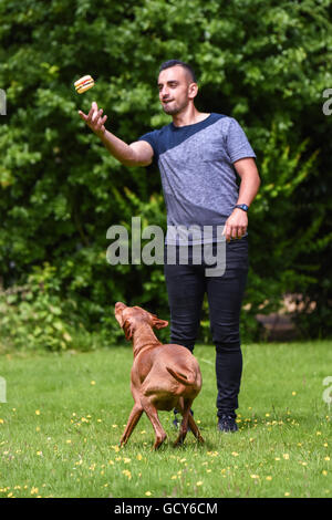 Man throws toy up for Hungarian Vizsla - Stock Photo