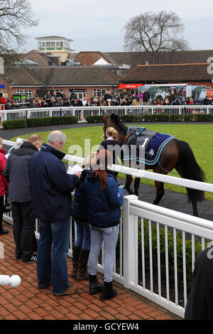 Horse Racing - National Hunt - Lingfield Park - Stock Photo