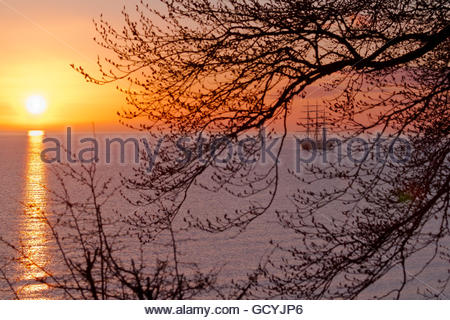Georg Stage, a three-masted full-rigged Danish training tall ship in sunrise in the Sound in Denmark. A spring morning - Stock Photo