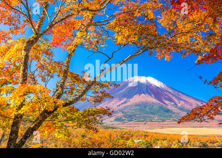 Mt. Fuji, Japan from Yamanaka Lake in autumn. - Stock Photo