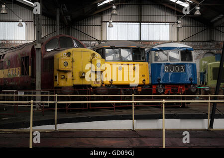 Class 37 locomotive with 2 electric locos in Barrow Hill Engine Shed - Stock Photo