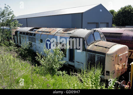 Derelict class 37 locomotive stored at Barrow Hill shed in England UK - Stock Photo