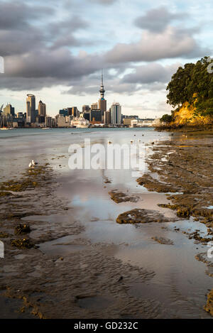 Auckland skyline seen across the harbour from Bayswater, Auckland, North Island, New Zealand, Pacific - Stock Photo