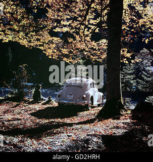 transport / transportation, cars, Volkswagen, VW Beetle 1300 from behind, rest in the forest, Germany, 1960s, Additional - Stock Photo