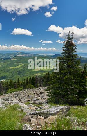 Mount Spokane in washington, USA. - Stock Photo