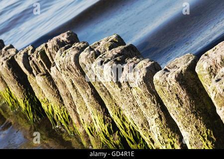 Old breakwaters in the sea in Kolobrzeg - Stock Photo