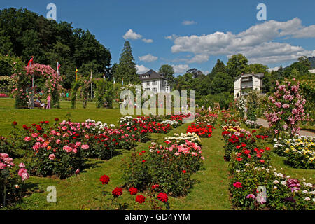 rosengarten beutig baden baden stock photo royalty free image 86426748 alamy. Black Bedroom Furniture Sets. Home Design Ideas