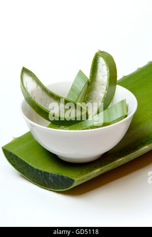 aloe vera gel in a bowl with pieces of aloe vera plant stock photo royalty free image. Black Bedroom Furniture Sets. Home Design Ideas