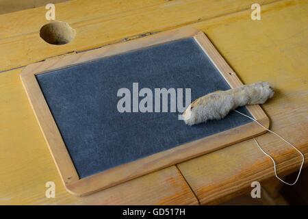 Pult mit Schiefertafel und Hasenpfote, Schultafel, Katzenpfote, Freilichtmuseum Linkoeping in Schweden, Europa, - Stock Photo