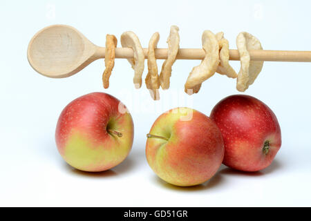 Aepfel und Apfelringe auf Kochloeffel