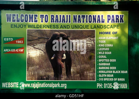 Rajaji National Park - Stock Photo