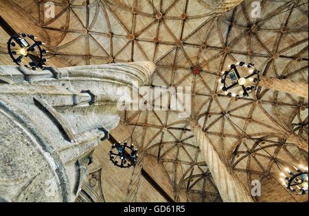 The Contract Hall at the Llotja de la Seda, Silk Exchange building. UNESCO World Heritage site. Valencia. Spain - Stock Photo