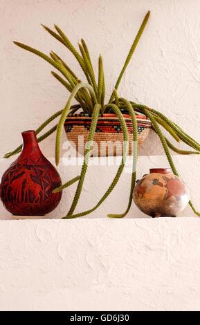 Aporocactus, Rat Tail Cactus,Disocactus flagelliformis - Stock Photo