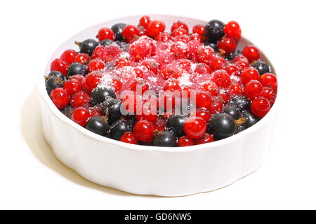 Red and black currants in a small bowl - Stock Photo