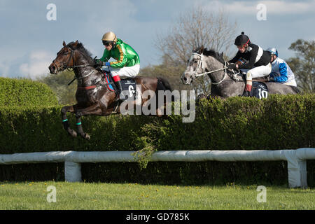 WROCLAW, POLAND - APRIL 24; 2016: International steeplechase for 4-year old horses at Racecourse WTWK Partynice. - Stock Photo