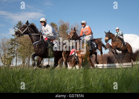 WROCLAW, POLAND - APRIL 24; 2016: Race with fences for 4-year old horses a Racecourse WTWK Partynice. - Stock Photo