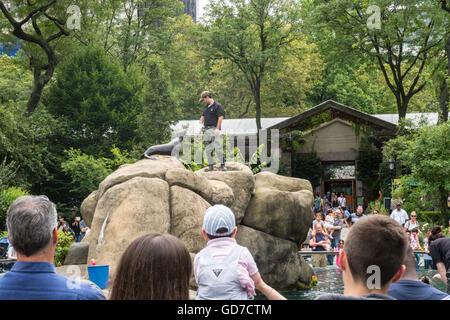 Central Park Zoo, NYC, USA - Stock Photo