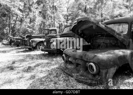 Crawfordville, Florida - USA. May 2016 - Old rusted trucks abandoned on the side of the highway. - Stock Photo