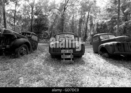 Crawfordville, Florida - USA. May 2016 - Old rusted trucks abandoned on the side of the road with a sign that says - Stock Photo