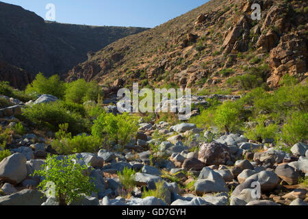 Agua Fria River canyon along Badger Springs Trail, Agua Fria National Monument, Arizona - Stock Photo