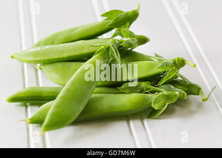 Edible sugar snap peas fresh from the garden. - Stock Photo