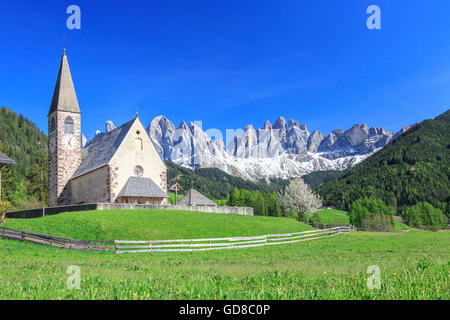 The Church of Ranui and the Odle group in the background St. Magdalena Funes Valley Dolomites South Tyrol Italy - Stock Photo