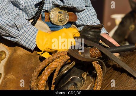 Cowboy holding reins, detail at Bison Roundup, Custer State Park, Black Hills, South Dakota, USA, America - Stock Photo