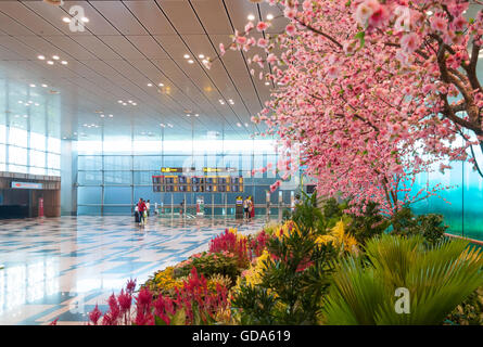 Photo Garden in Terminal 2, Singapore Changi Airport, Changi, Singapore - Stock Photo