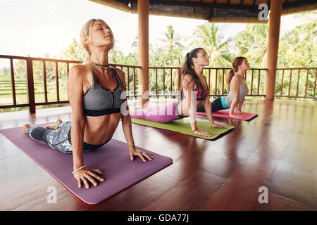 Fitness women practicing the cobra pose during yoga class in a health center. Fitness group doing cobra pose in - Stock Photo