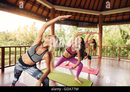 Yoga class with young women stretching arms. healthy group of females performing yoga together. - Stock Photo