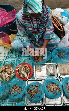 seafood at the market in the city of Bandar seri Begawan in the country of Brunei Darussalam on Borneo in Southeastasia. - Stock Photo