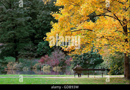 Single man sitting on a bench in park - Stock Photo