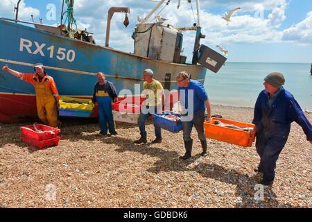 Hastings fishermen unloading catch of fish East Sussex England Britain UK - Stock Photo